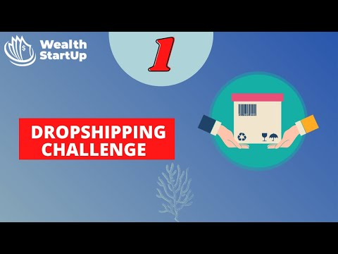 Dropshipping Challenge (#1)   How to start dropshipping with no money   make money online 2021