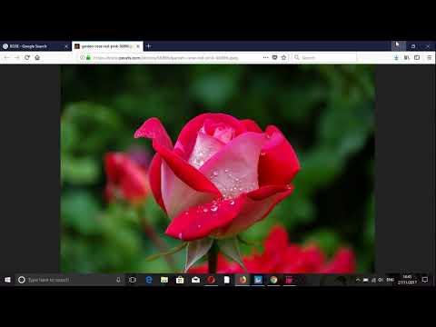 Laptop Mai Image Kese Download Kare