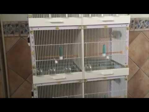 Jaula para pajaros casera fabricada desde una estanteria - Hacer estanteria casera ...
