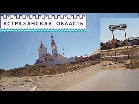В село Цветное (Астраханская обл.)
