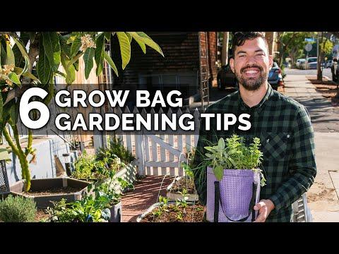6 Secret Grow Bag Techniques to Maximize Your Results