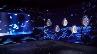 京都水族館「冬を楽しむインタラクティブアート 雪とくらげ」でクラゲが部屋を泳ぐ&雪が舞う様子