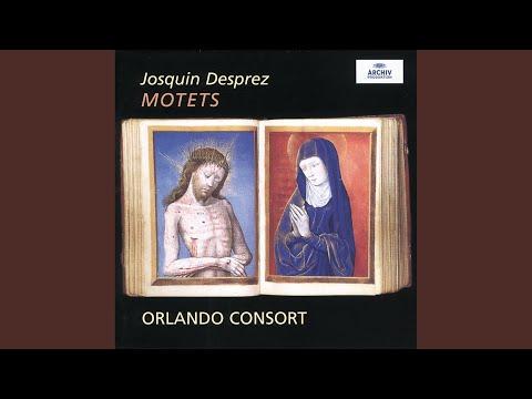 Josquin Des Prez: O Virgo virginum à 6