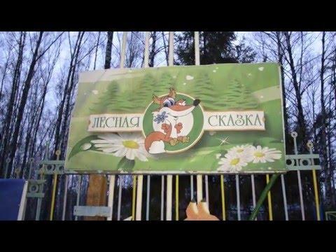 Детский оздоровительный центр Лесная сказка
