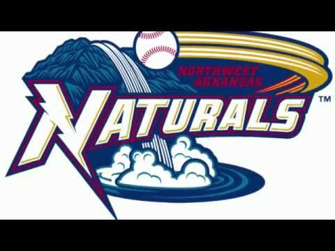 The Top 30 Minor League Baseball Logos (Part 1, 30-16)