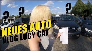 NEUES AUTO FÜR WILDEN HENGST!    VLOG      | LUCY CAT