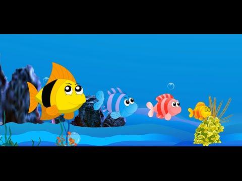 les animaux comptines et chansons pour enfants les petits poissons dans l eau etc youtube. Black Bedroom Furniture Sets. Home Design Ideas