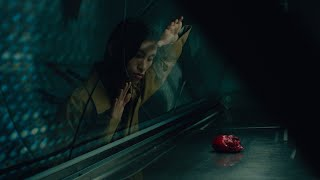 Download Lagu Novo Amor - I Feel Better   MP3