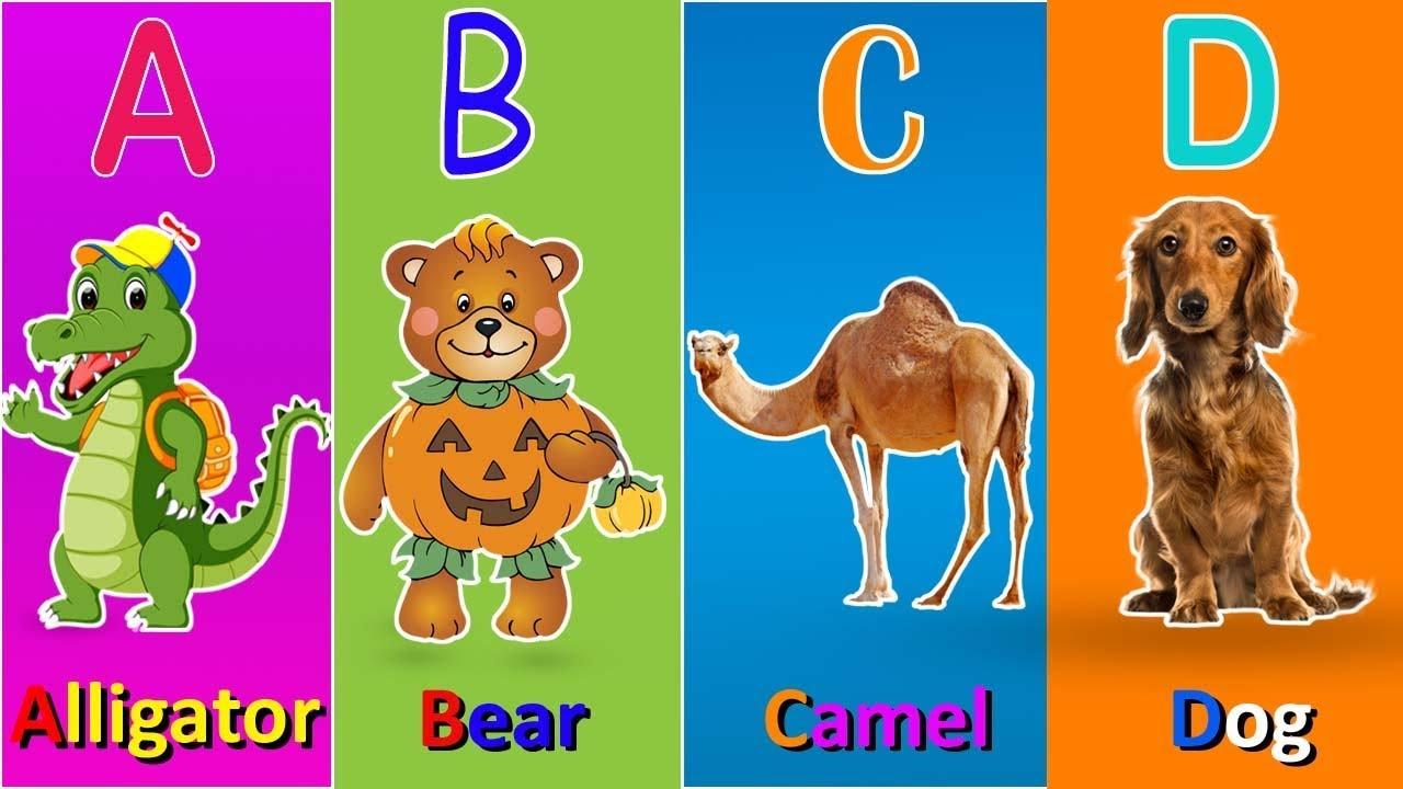 Abc Alphabet Songs For Kids A For Alligator B For Bear C For Camel Youtube
