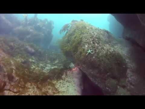 Diving in Ireland - Ronas Crack