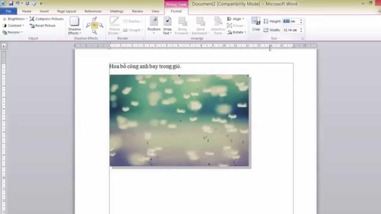 Cách chèn hình ảnh trong văn bản Word