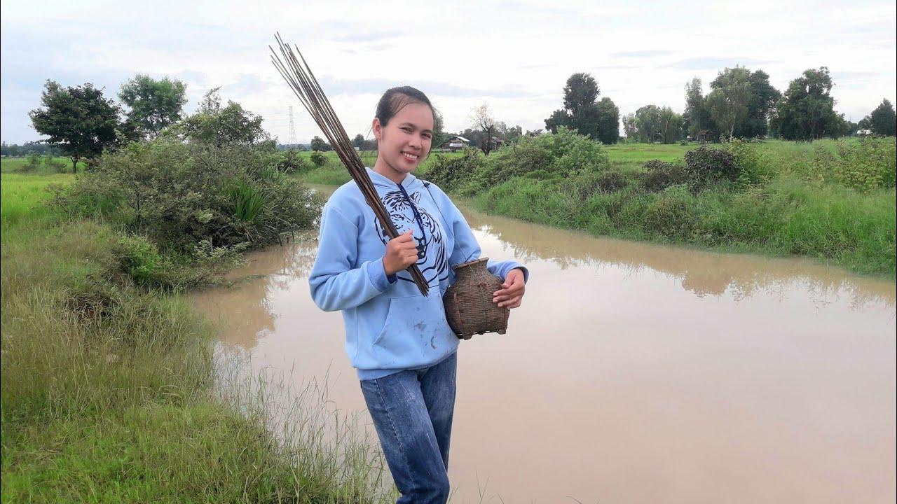 สาวลาวพาไปยามเบ็ดกบยามเช้า น้ำมากเต็มห้วย : ສາວລາວພາໄປຢາມເບັດກົບຍາມເຊົ້າວັນນ້ຳມາກ