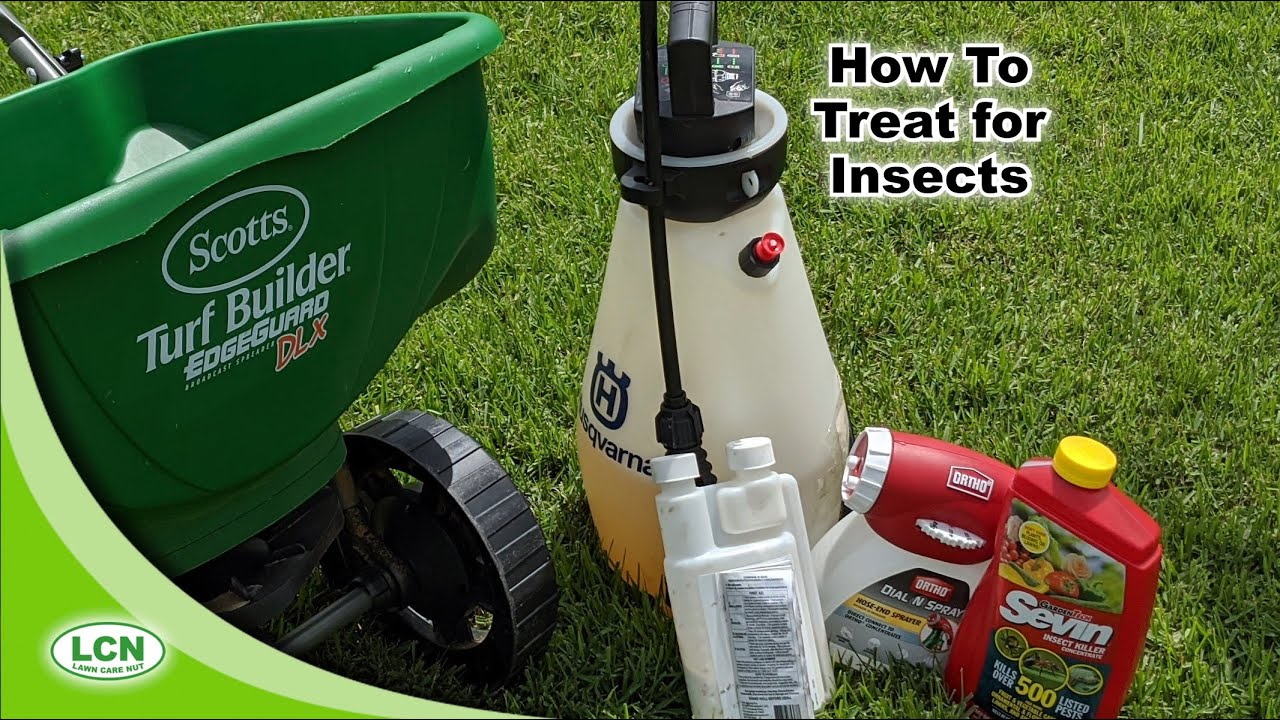 How To Treat For Bugs In The Lawn :: Liquid and Granular Options