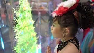 SM Christmas Critters Holofan