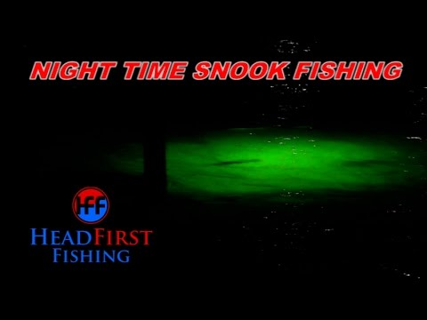 Best lures and tactics for spring snook dock light fishing for Best light for night fishing