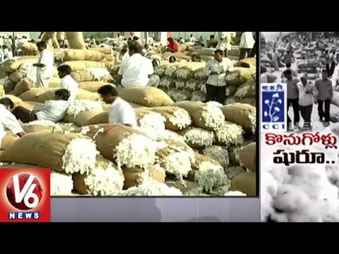 CCI Begins Cotton Purchase In Karimnagar District || V6 News