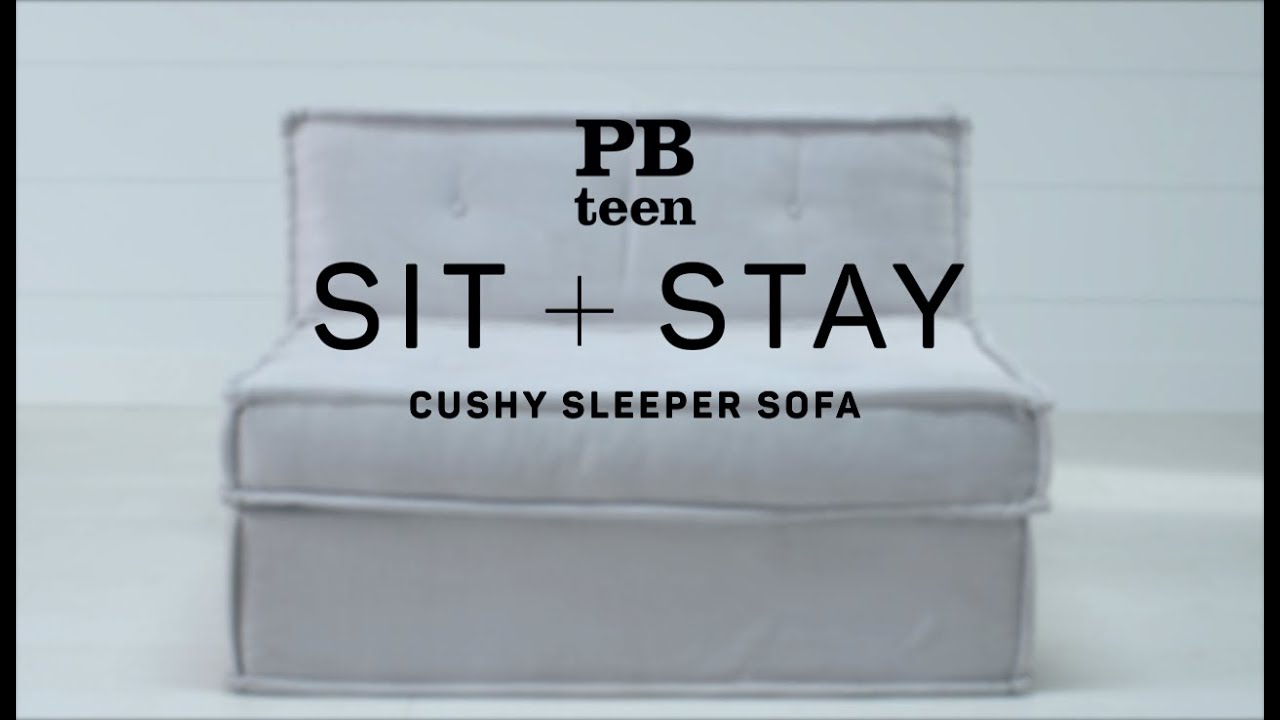 Sit Stay Cushy Sleeper Sofa Pb