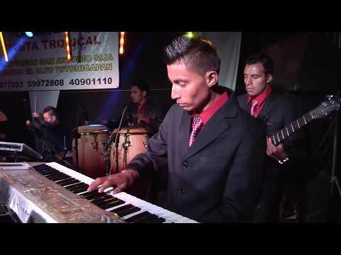 Fiesta Tropical - Concierto Tropicaleros