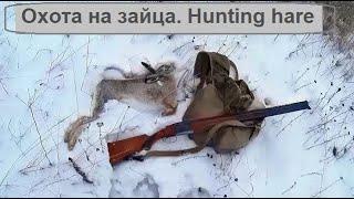 Охота на зайца троплением после пороши