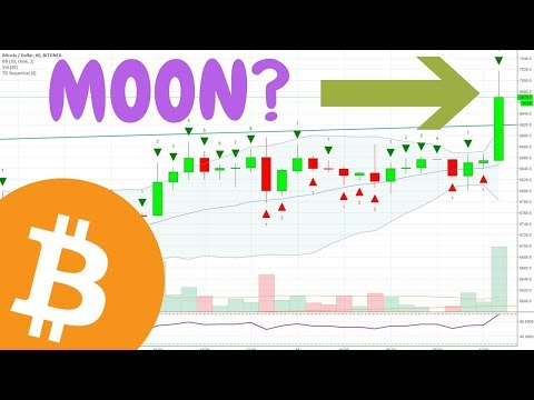 Bitcoin Moon?  Shorts Covering - Is BTC Bottom In?