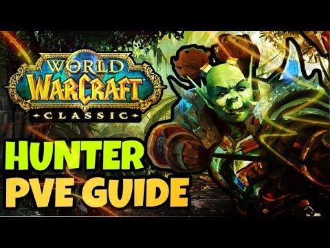 Classic WoW Hunter PvE Guide (Talents, Rotation, Consumables, etc