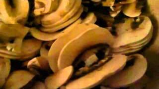 Капуста с грибами.(По Дюкану)