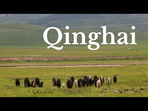 THINGS TO DO IN QINGHAI, CHINA | Qinghai Travel Guide | Tibetan Plateau