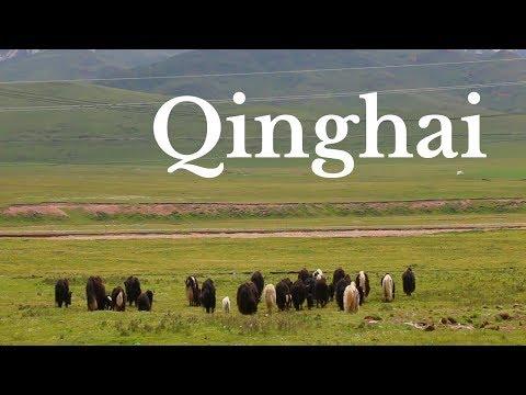 THINGS TO DO IN QINGHAI, CHINA | Qinghai Travel Guide | Tibetan Plateau