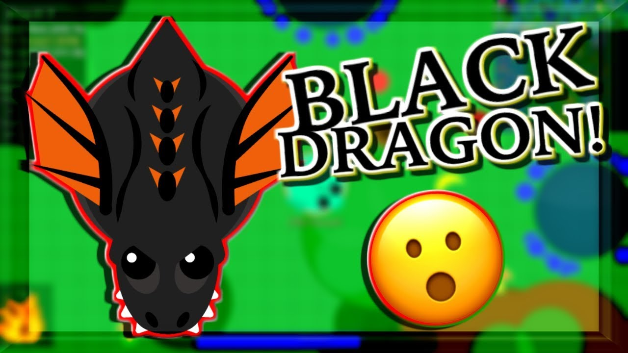 Black Dragon Hacker Photos