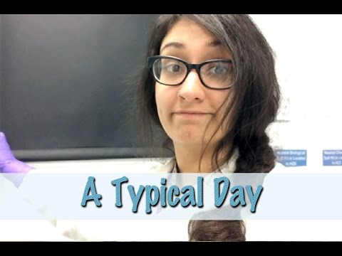 Life of a Scientist- A Typical Day
