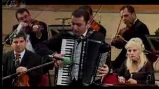 Marian Mexicanu - accordion