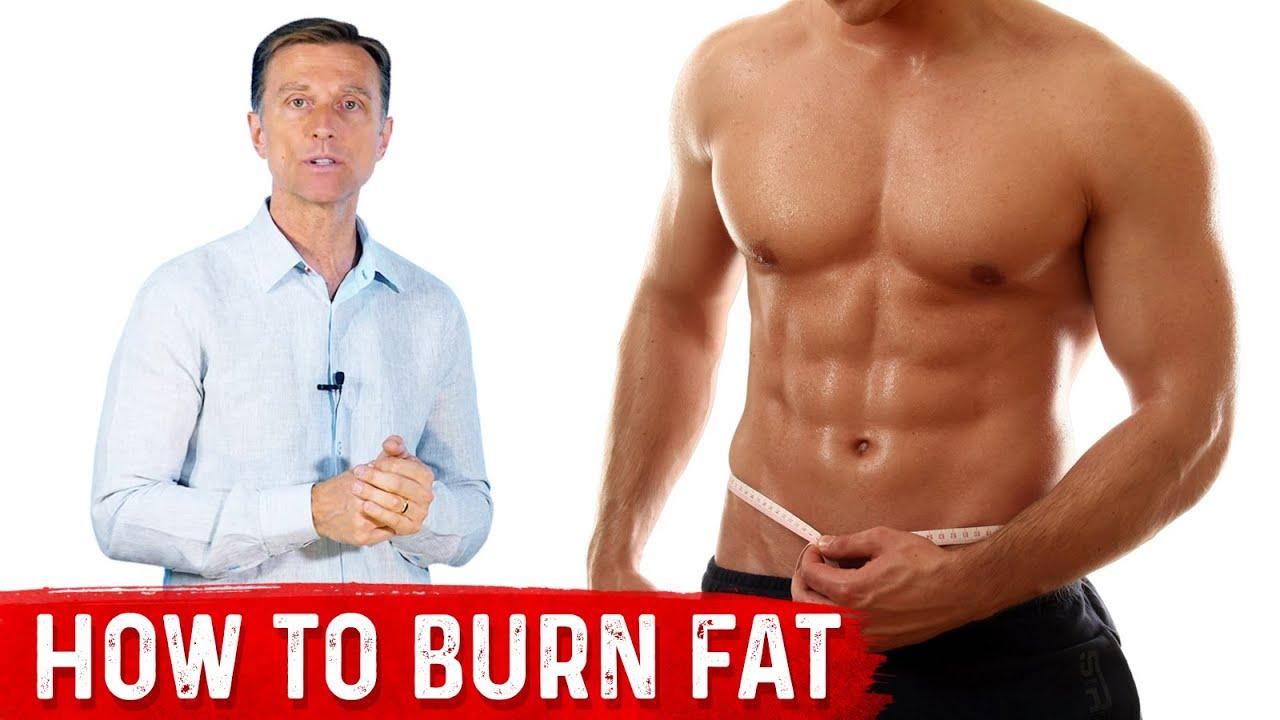 dr eric berg burning fat)