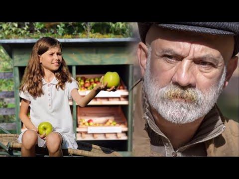 Nessuno voleva comprare le mele della bambina finchè un uomo anziano non le chiese come mai fosse li