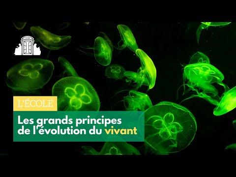 LES GRANDS PRINCIPES DE L'ÉVOLUTION DU VIVANT