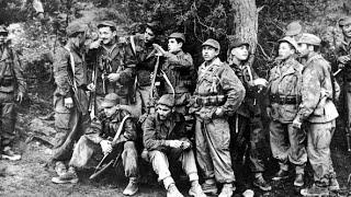 حرب التحرير واستقلال الجزائر ج.2 | الجزيرة الوثائقية