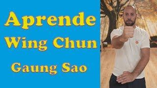 """Aprende WING CHUN en ESPAÑOL """"Gaung Sao"""" 🐈5º🐈"""