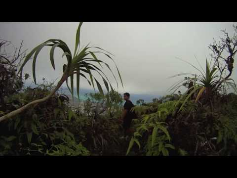 Hawaii Loa Ridge View