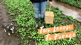 TWO LEARN TO FORAGE (AND MAKE SOUP) - Tanya Louise