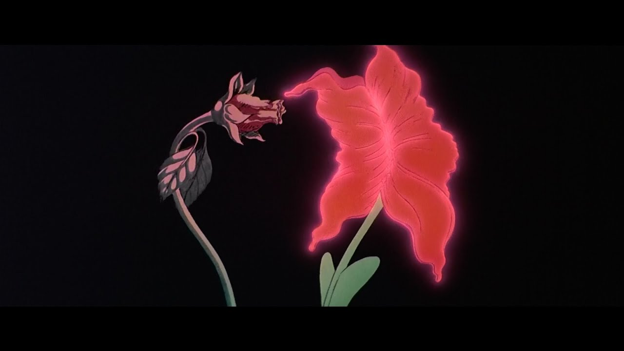 Gerald scarfe flowers gardening flower and vegetables pink floyd the wall what shall we do now hd from the mightylinksfo