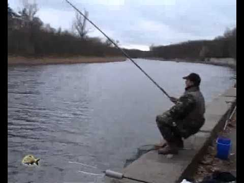 ловля карпа на кружок видео