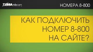 подключение номера 8800 за 5 минут на сайте zebratelecom.ru