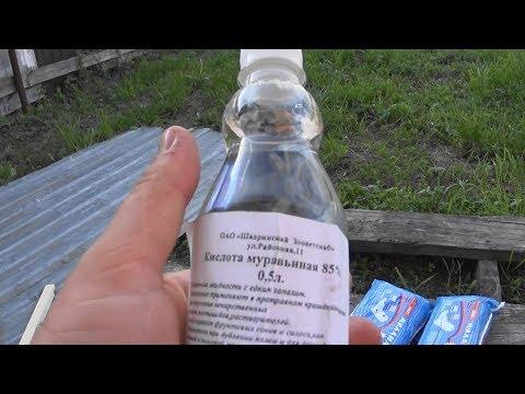 Как обрабатывать пчел муравьиной кислотой