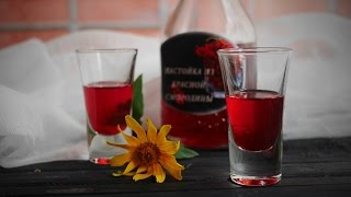 Настойка из красной смородины на водке или спирте - рецепт