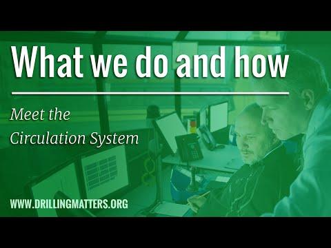 Meet the Circulation System