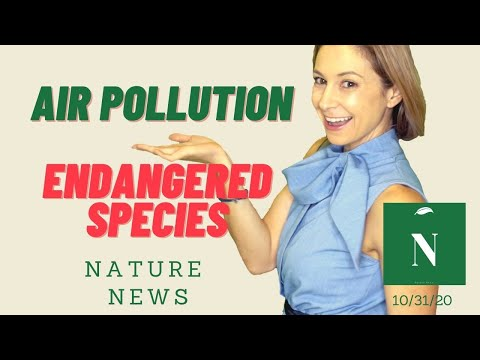 Air Pollution Kills Millions, Climate Change & Scary Animals - Nature News