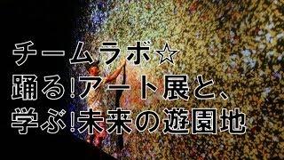 チームラボ☆踊る!アート展と、学ぶ!未来の遊園地 / 秋田県立近代美術館