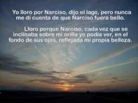 Frases Seleccionadas En El Alquimista De Paulo Coelho Youtube