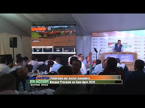 Bernardo Socias - Rematador de Ildarraz Hnos S.A - Remate Especial Rosgan en Expoagro