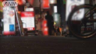 飲食店の倒産 東日本大震災の年を超え年間過去最多(2020年12月27日) - YouTube