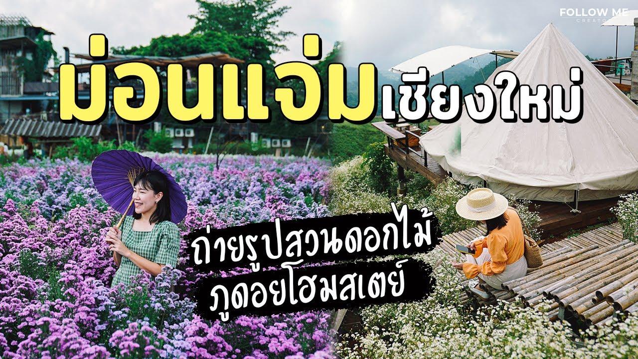 เที่ยวม่อนแจ่ม ถ่ายรูปสวนดอกไม้เชียงใหม่&สวนดอกเก๊กฮวย นอนชมหมอก@ภูดอย | Follow Me เที่ยวไทย EP.17